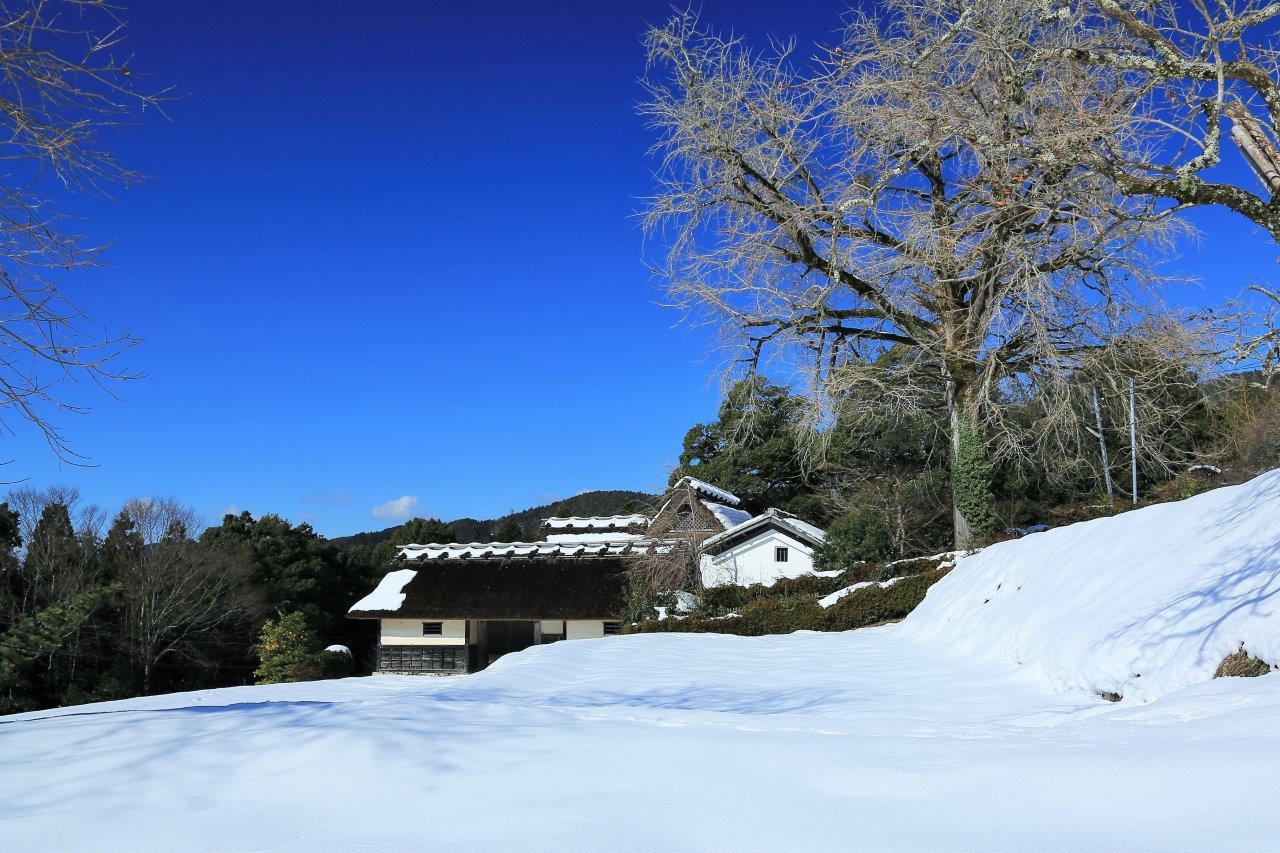 雪晴 朝の長屋門