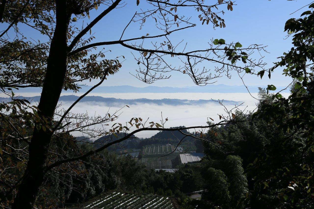 里山に雲海